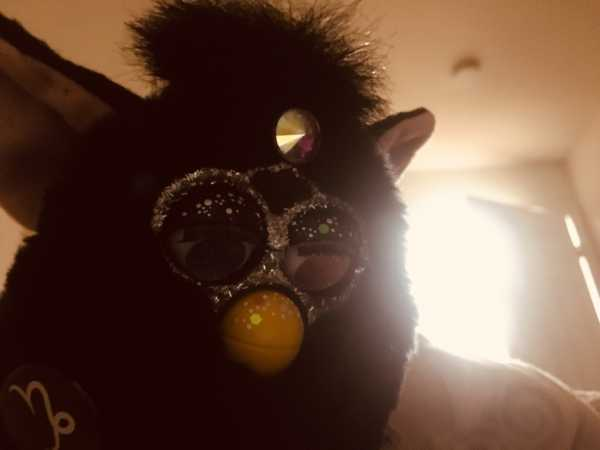 Meet the Furby collectors of Tumblr | Breaking news 24